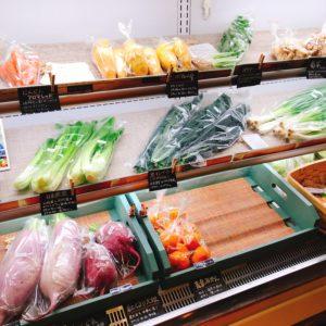 富士山嶺野菜